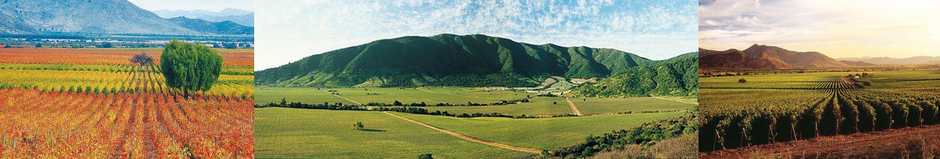caliterra-panorama1