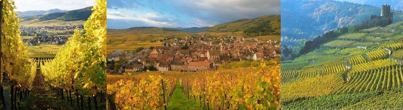 champagne-alsace-panorama1