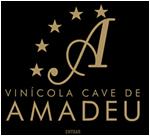 logo_amadeu