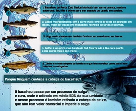 bacalhau-tipos-1