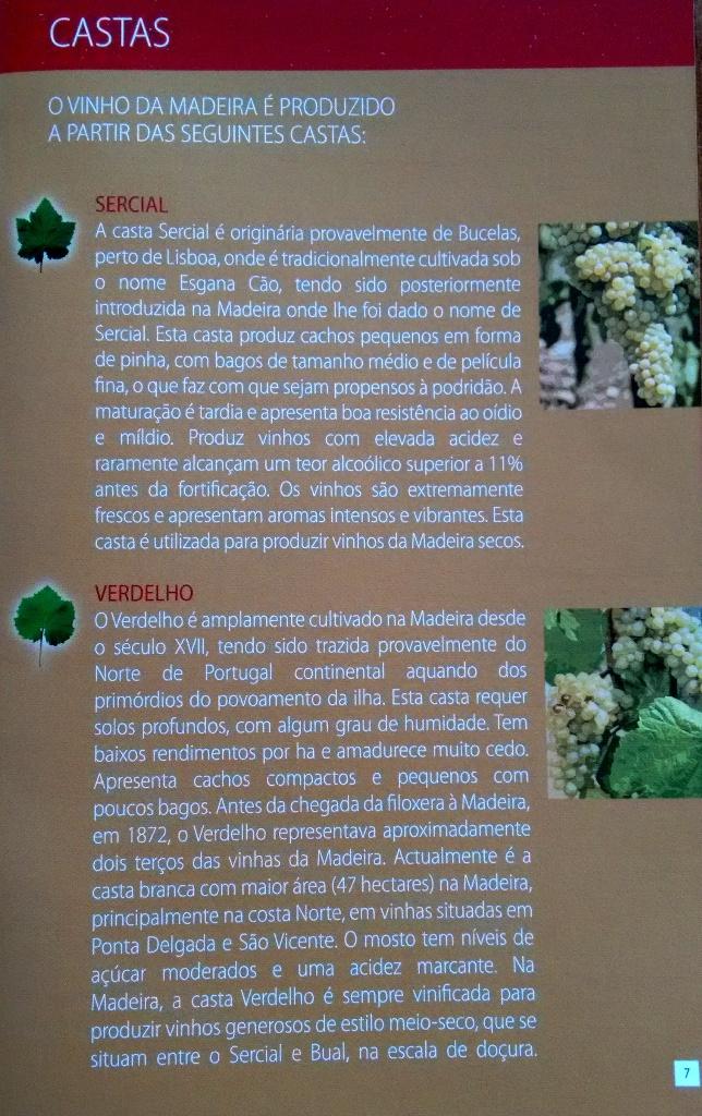 Madeira Castas 1