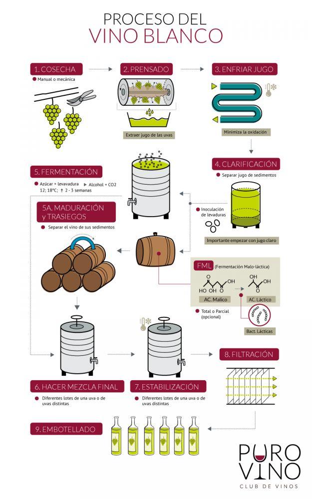 poster sobre elaboração de vinhos brancos