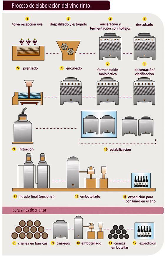 Processo elaboração de tintos